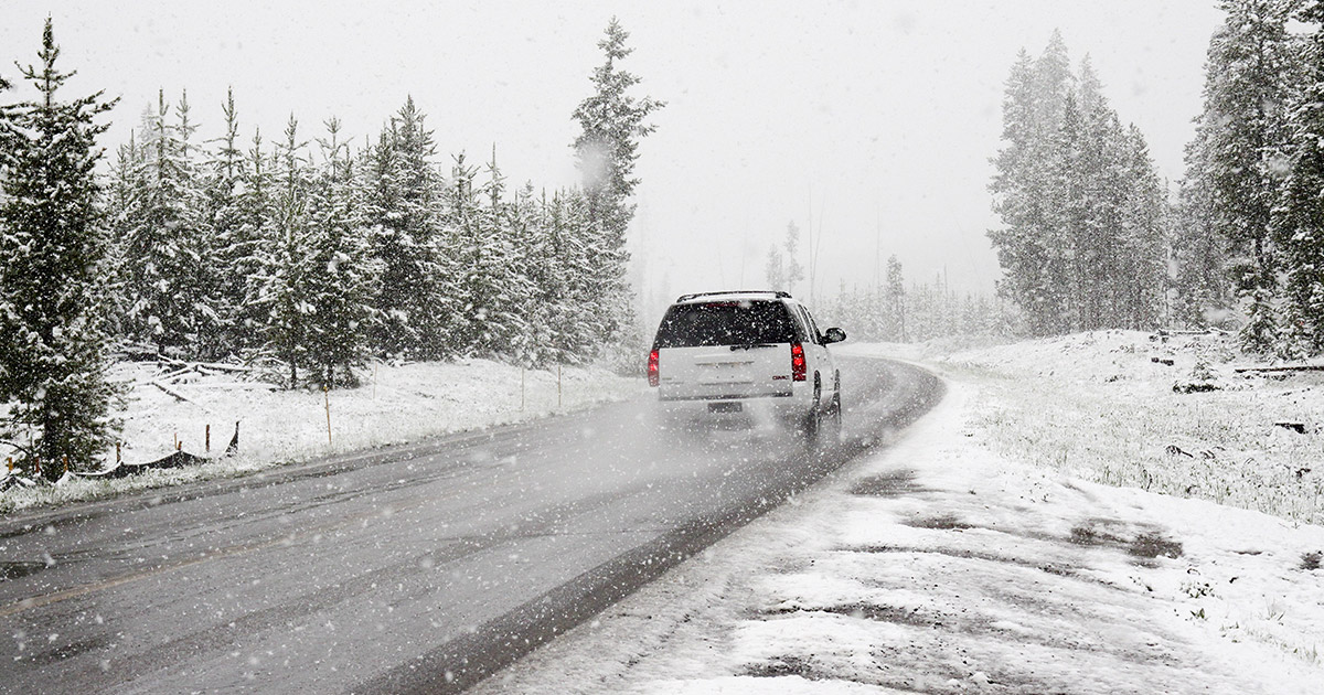 beli terenac na putu prekrivenim snegom